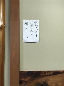 20171021152527.JPG